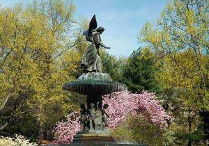 (Photo Courtesy of Central Park Conservancy)